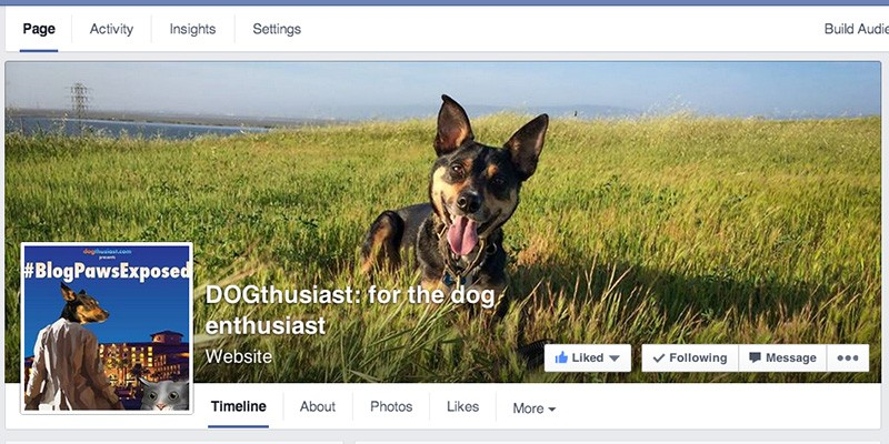 Facebook Pages vs Groups by #Tripawds: Liveblog notes from conference session