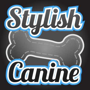 stylish-canine-square