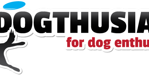 DOGthusiast rebranded logo