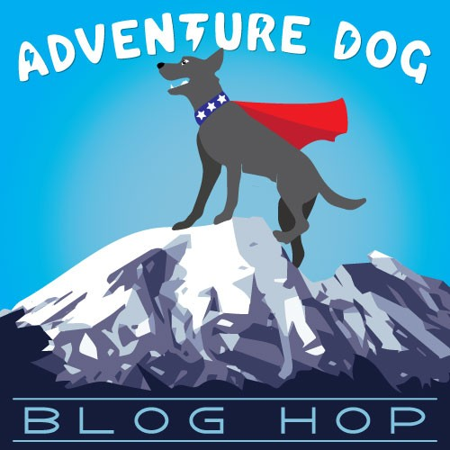 Adventure Dog logo