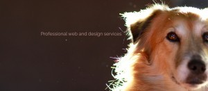 FoundPixel web and design services
