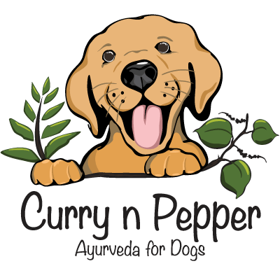 Dog food company creating plant-based dog meals and treats.