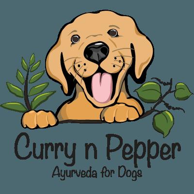 Curry n Pepper Logo