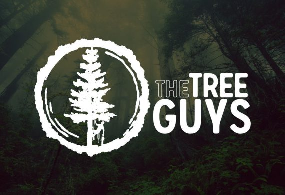 Logo for tree specialists