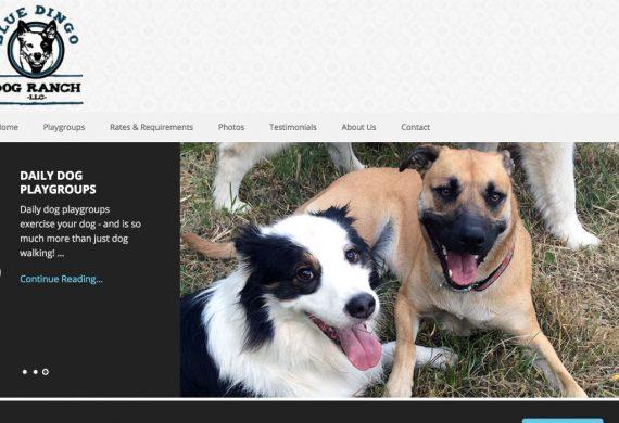 Blue dingo dog ranch site