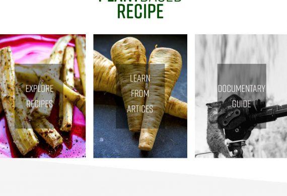 Plant Based Recipe website feature area